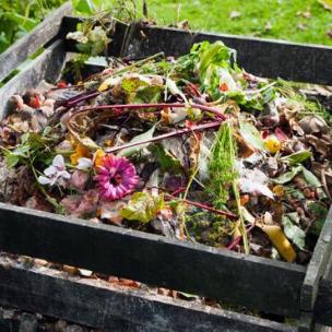 Compost (Drop-off)
